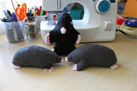 mole pattern ideas first blog post siowfa15 science in our world
