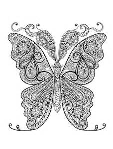 Coloring pages for adults with insects pic