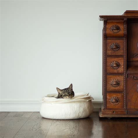 Handmade Cat Beds - handmade felt cat caves beds and baskets by