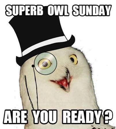 Superb Owl Meme - yet another superb owl sunday yet another website
