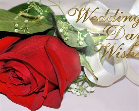 Wedding Wishes Display by Wedding Day Wishes 232 Wallpapers13