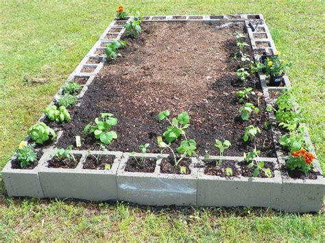 A Little Bit Of This And That Raised Bed For Vegetable Garden Cinder Block Vegetable Garden