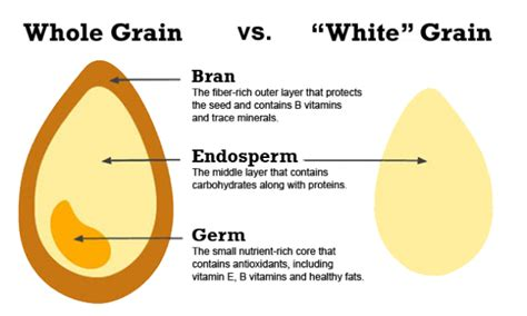 5 nutrients in whole grains six weeks to a healthy diet week 5 whole grains band