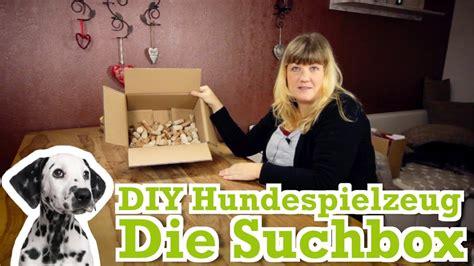diy hundespielzeug kostenlos selber machen  die suchbox