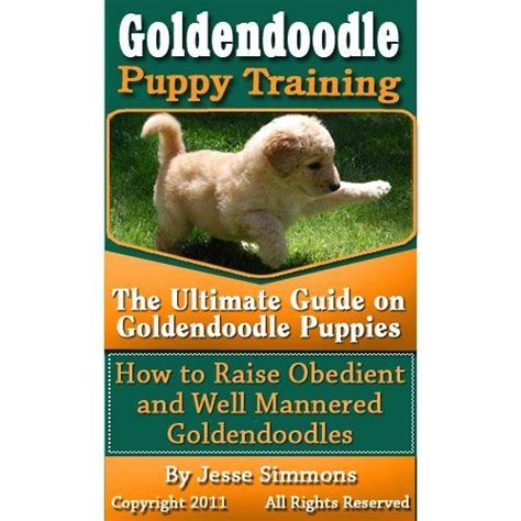 goldendoodle puppy guide goldendoodle puppy the ultimate guide on