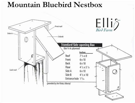 bird house plans for sparrows
