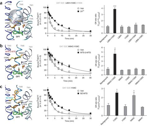 n supplementary reagent l validation of the cft model using intramolecular