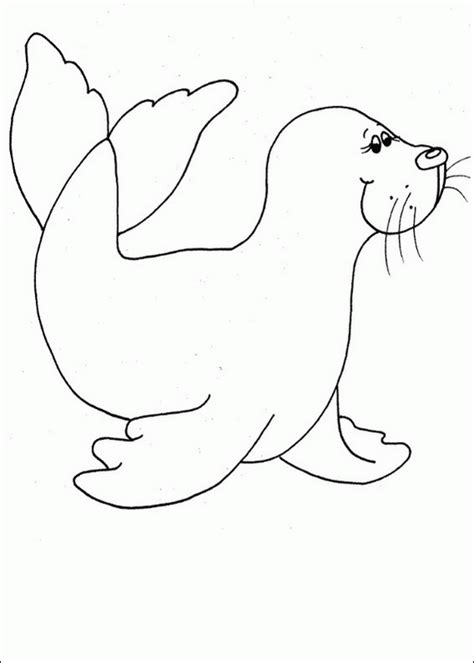 seals coloring pages az coloring pages