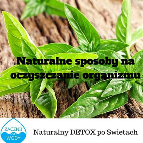 Detox Co Pic Zeby Oczyscic Organizm by Jak Oczyścić Organizm Zielony Detox Profilaktyka