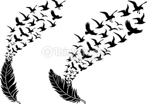 uccelli non volanti piume di uccelli volanti vettoriale arte vettoriale