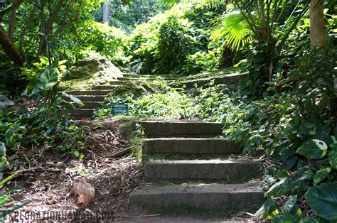 Friendship Gardens by Experience Solitude And Nature In Kaneohe At The Friendship Garden Exploration Hawaii