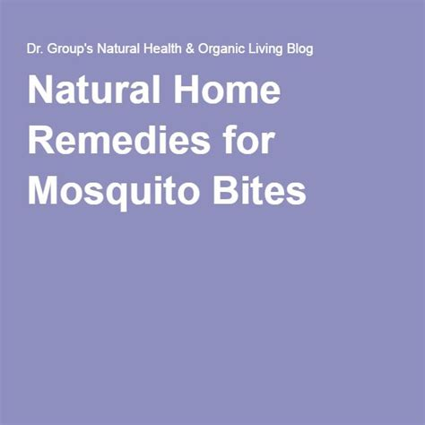 best 25 remedies for mosquito bites ideas on