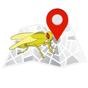 fruit fly bar pro fruit fly barpro the number 1 fruit fly killer in