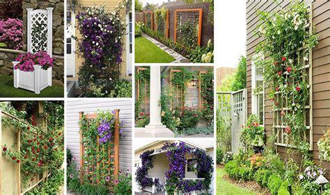 creative  easy diy trellis ideas   garden