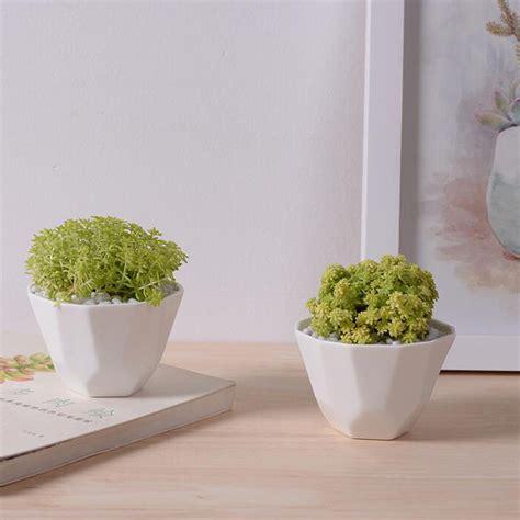 white indoor planter gardening guide
