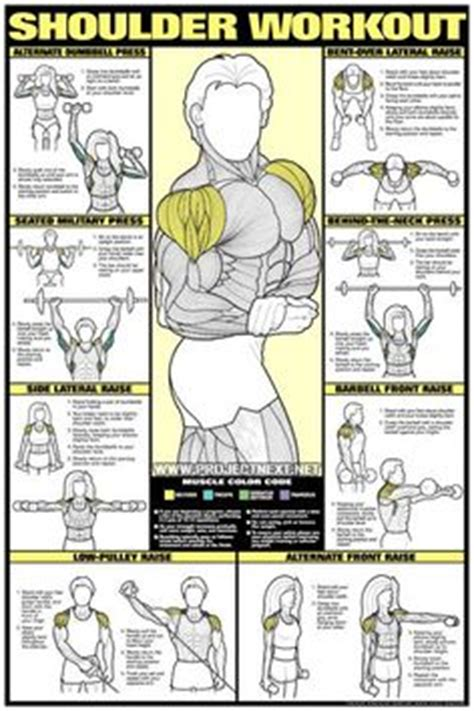dumbbell exercises for chest no bench dumbbell workout program chest workout bench press fly