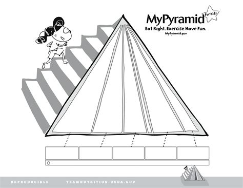 blank food pyramid worksheet quotes