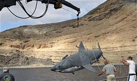 submarino el tiburn asesino punto de inmersi 211 n tiburon submarino
