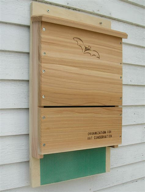 3 chamber bat house plans build by own