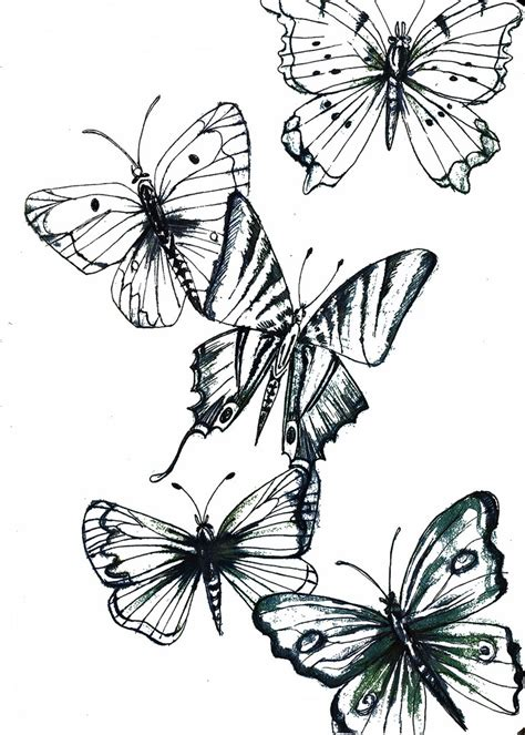 tattoo butterfly sketches butterfly sketch 2 digital manipulation ink drawing
