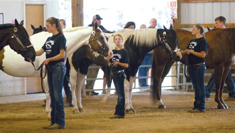 Animal Sweepstakes - fair attendance numbers continue to increase leader publications