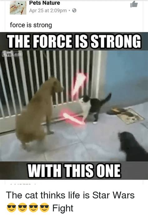 The Force Is Strong With This One Meme - 25 best memes about the force is strong with this one