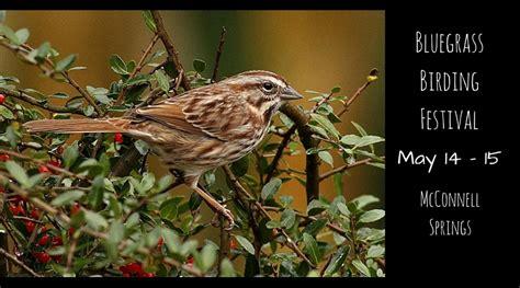 bluegrass birding festival lexfun4kids