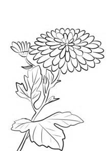 mums colouring book of 1530725488 chrysanthemum coloring pages coloring page cartoon