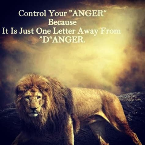 the 25 best lioness ideas 25 best ideas about quotes on leo where
