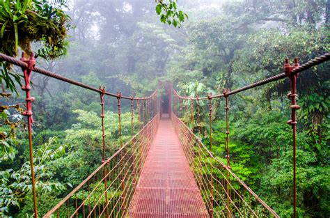 Can You Travel To Costa Rica With A Criminal Record The Concise Costa Rica Travel Guide How To Prep Pack