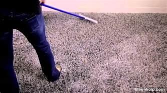 carpet grooming rake