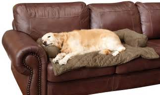 new bolstered furniture covers for pets provide protection