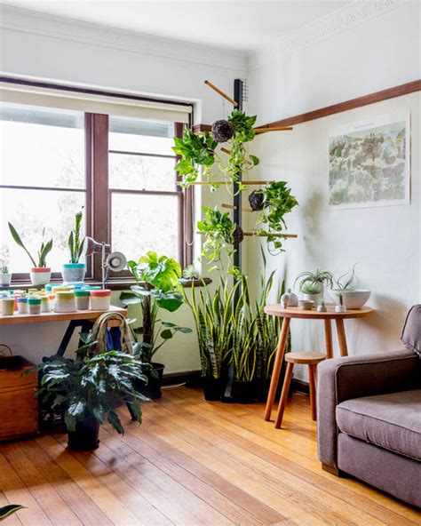 7 different way to indoor plants decoration ideas in plants at home d 234 flores de presente pra sua casa blog oppa