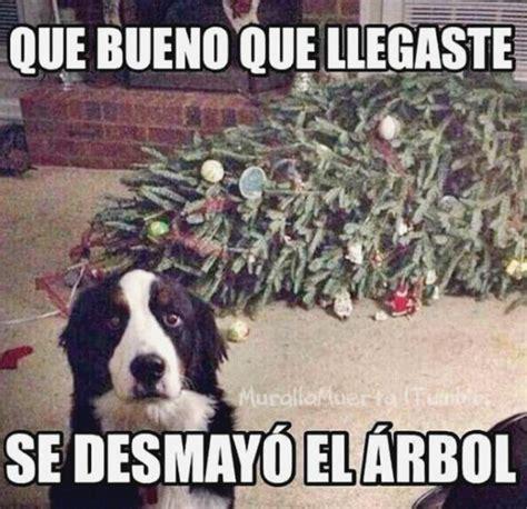 imagenes de memes en navidad meme humor perros 8 tuexpertoapps com