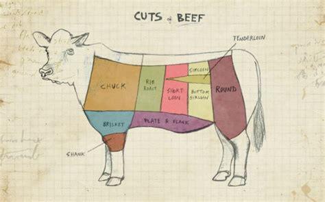 beef sections chart plus de 1000 id 233 es 224 propos de beef charts plus beef cuts