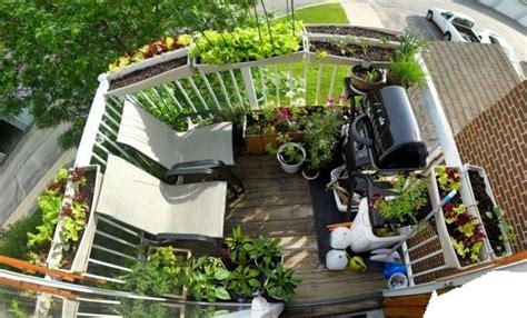 pflanzen überwintern balkon balkon ideen gestaltung gartenforum