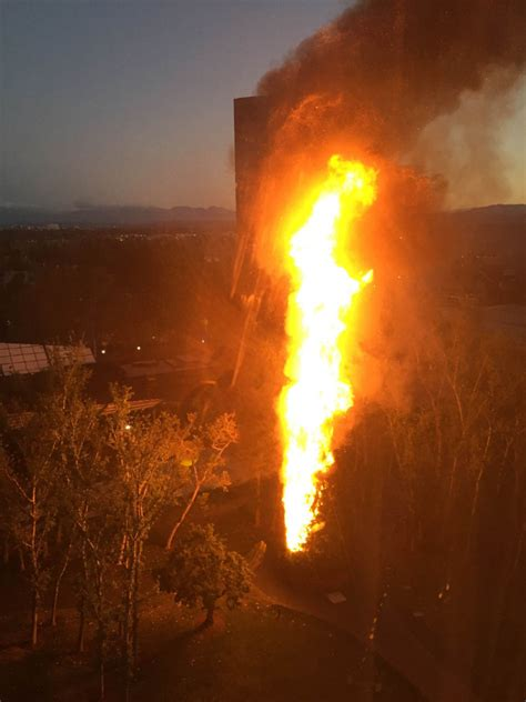 giant 96 foot christmas tree catches fire outside