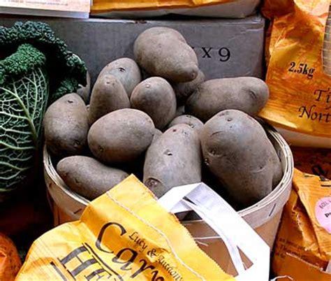 Potato Synonym by Shetland Black Potato Nitty Grits