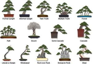 different styles of architecture discovering the art of bonsai blue ridge ecosystems inc