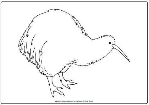 coloring page kiwi bird funny snownall fights during heavy snow on winter coloring