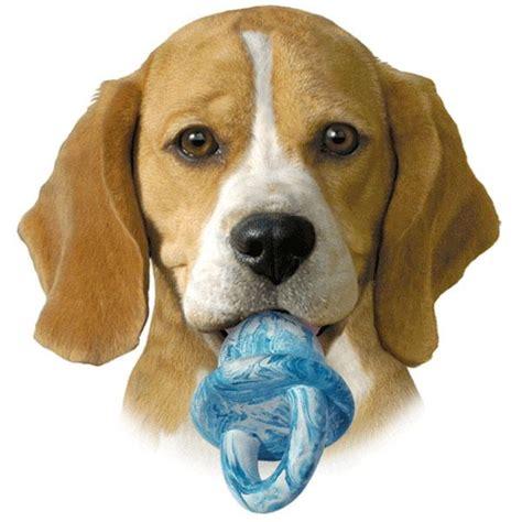puppy pacifier pet supply puppy kong binkie binky pacifier play chew pink rubber large ebay