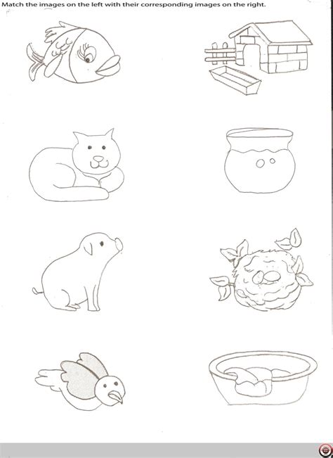printable pictures of animal homes worksheet animal homes worksheets grass fedjp worksheet