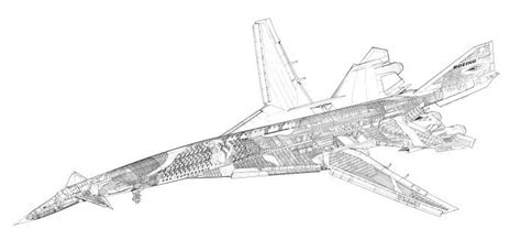 cyanotype blueprints cutaway boeing jet aircraft