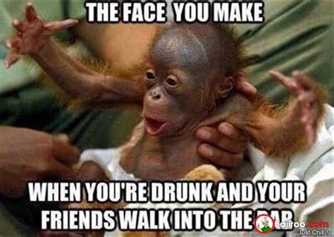 funny monkey meme pictures  images