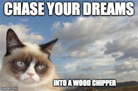 Goodbye Cat Meme - grumpy cat sky meme imgflip