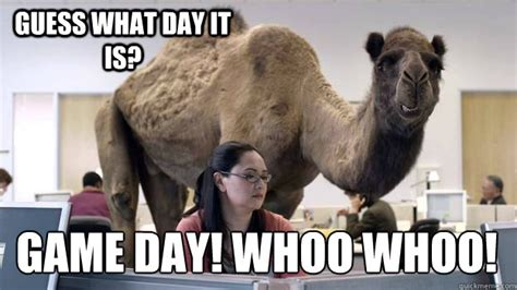 Game Day Meme - guess what day it is game day whoo whoo hump day