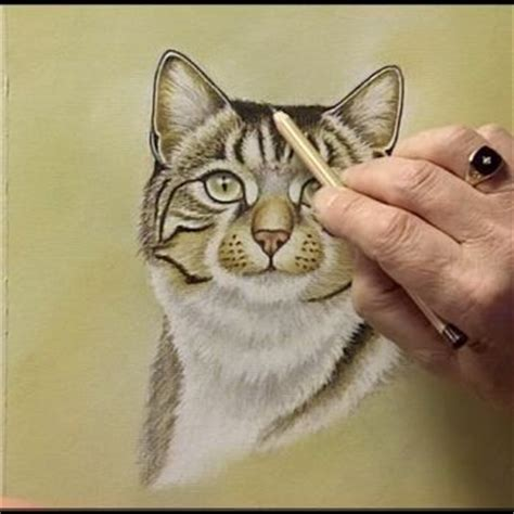 cat painting tips 97 best images about animal portrait drawing painting
