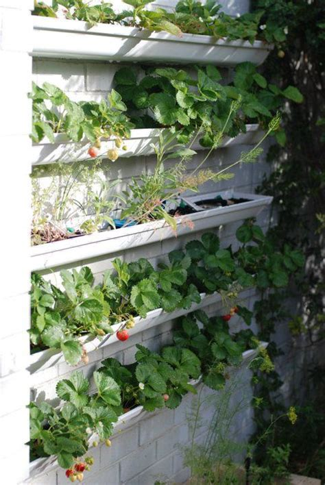 Gutter Vegetable Garden How To Hang Gutters On The Side Of The House For