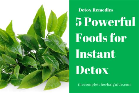 Powerful Detox Foods by Detoxifying The Archives The Complete Guide To