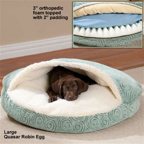 cozy dog bed 25 best cozy cave dog bed ideas on pinterest cave dog bed weenie dogs and wiener dogs
